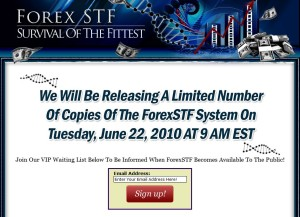 Forex STF